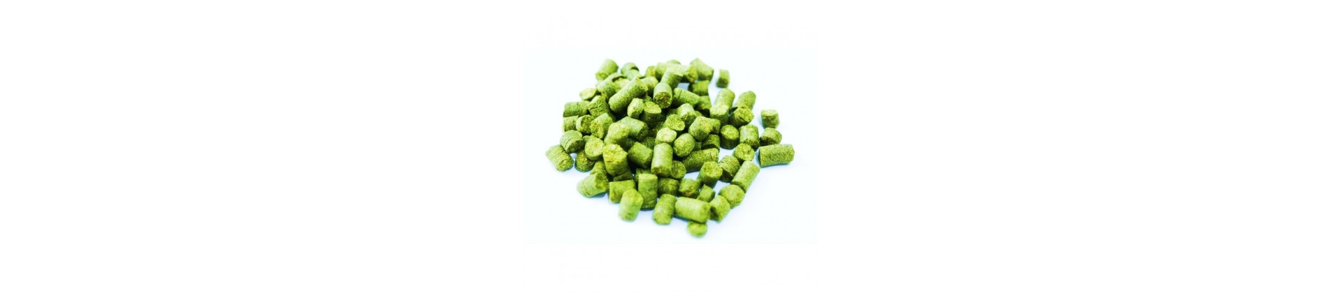 Aromatic hops